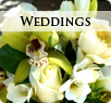 portfolio weddings